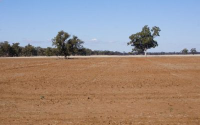 Nationals Ramp Up Drought Fight