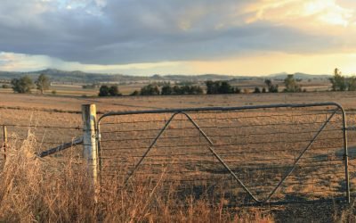 Nationals In Government Delivering For Farmers