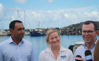 Local Seafood Industry Benefits With Nationals