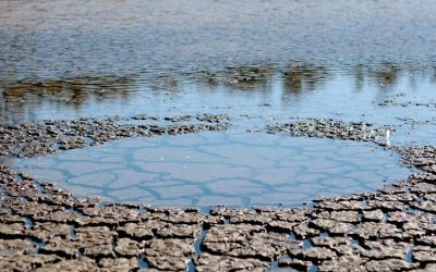 Murray-Darling Basin Plan Untenable For NSW